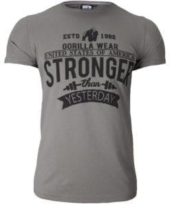 Sport T-shirt Grijs - Gorilla Wear Hobbs 1